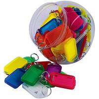 Kevron Plastic Clicktag Key Tag Giant Assorted Tub of 70 ID30AC70